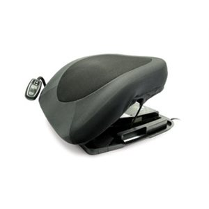 Cushion and Lifting Seat: Electric
