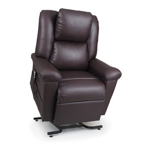 DayDreamer Power Pillow Recliner