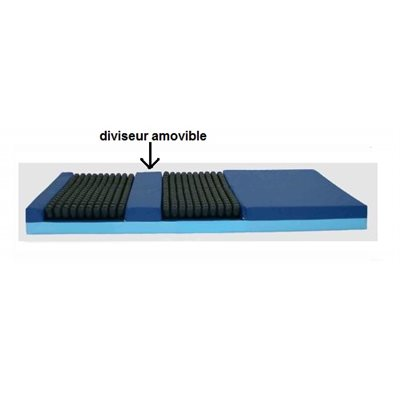 Mattress: V4 Roho - Therapeutic Surface (removable divider)